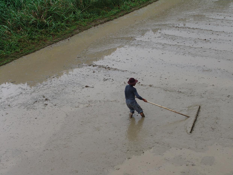 aanleg rijstveld